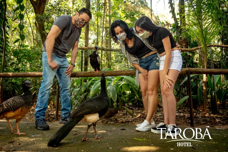 Família no Parque das Aves. Como fazer uma viagem para Foz do Iguaçu durante a pandemia