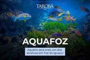 Aquafoz será o mais novo atrativo em Foz do Iguaçu