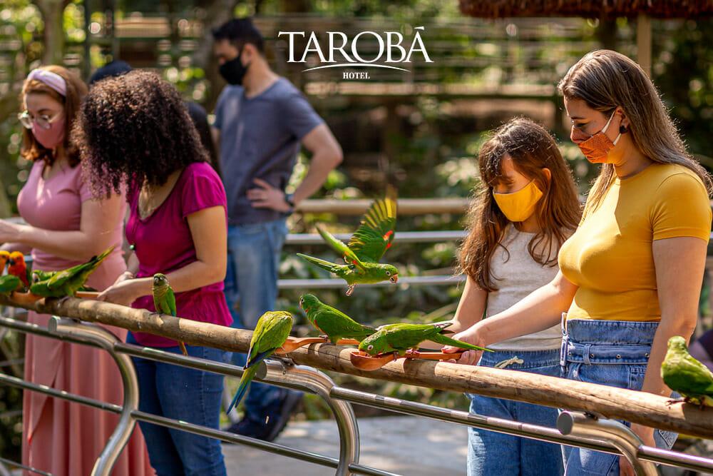 Parque das Aves, o local ideal para visitar com as crianças